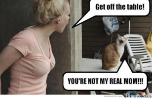 You-are-not-my-real-mom_o_139082